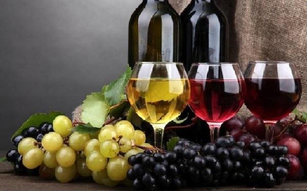 Giống nho làm rượu vang