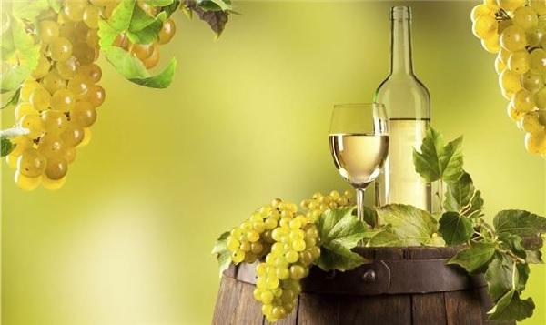 các giống nho làm rượu vang trắng